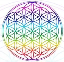 La Fleur De Vie Et Les Geometries Sacrees De L Univers