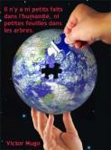 Terre puzzle